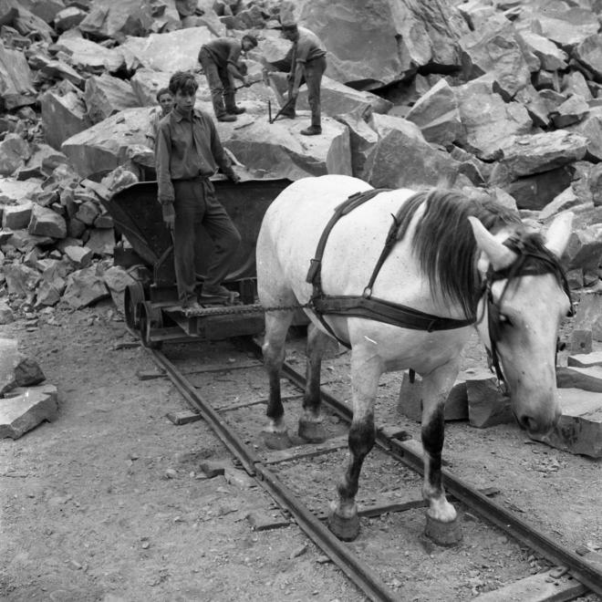 1970 Dunabogdány kőbánya